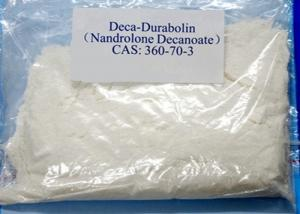 Buy cheap Safe Deca Durabolin Steroids Nandrolone Decanoate CAS 360-70-3 Powder product