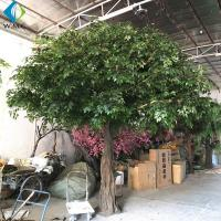Buy cheap Fiberglass Trunk Artificial Ficus Tree For Hotel Exhibition Hall Ornament product