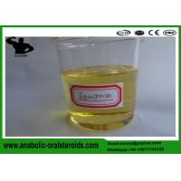 Quality Boldenone Steroid Boldenone Undecylenate for Bodybuilding , CAS 13103-34-9 Bulking Steroids Equipoise for sale