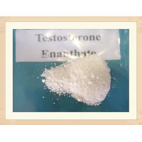 Buy cheap Raw powder for Test E 250 Anabolic Steroids Oil Testosterone Enanthate 250mg/ml product