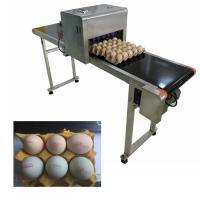 Egg Expiration Date Stamp Machine With Various Colors Food Grade Ink To Choose