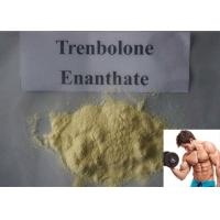 Buy cheap Powerful Muscle Building Steroid Trenbolone Enanthate CAS 472-61-546 Yellow Oil 100mg/ml product