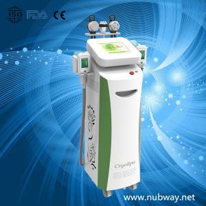Buy cheap cinco punhos--máquina do emagrecimento de Cryolipolysis da redução das celulites/gordura do cryolipolysis product