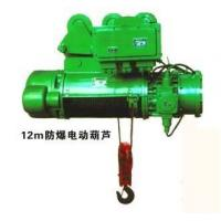 China YUANTAI High Strength BCD Explosion-proof Wire Rope Electric Hoist on sale