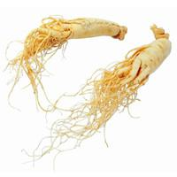 Quality 100% Natural Ginseng Polysaccharides for sale