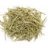 Buy cheap Ma huang Ephedra vulgaris Herba Ephedrae dried plants retail online in China from wholesalers