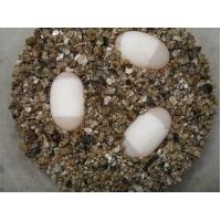 Buy cheap big size gold yellow vermiculite for hatch eggs,5-8mm.8kg/bag product