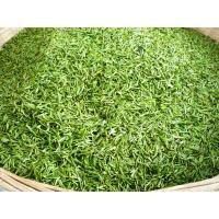 Morocco Green Tea Supplier with Quality China Green Tea 41022A