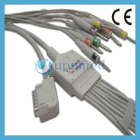 China Kenz PC-109 10 Lead EKG Cable with leadwires;EKG Cable with leadwires on sale