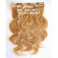 China pure human remy clip in hair extensions on sale