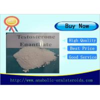 Buy cheap Bodybuilder Raw Testosterone Enanthate Steroid Powder  CAS 315-37-7 product