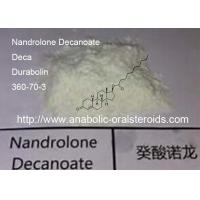 Buy cheap Muscle Growth Deca Durabolin / Nandrolone Decanoate  360-70-3 Long Steroid Cycle product