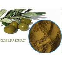 Buy cheap Organic Olive Leaf Extract For High Blood Pressure ,  Pure Olive Leaf Extract Super Strength product