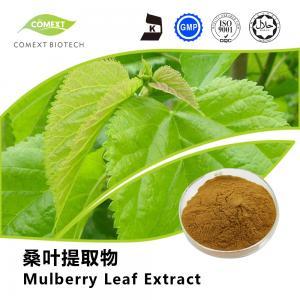 Quality Diabetes Mellitus Mulberry Leaf Extract 1-DNJ 1-Deoxynojirimycin Powder 1%~2% for sale