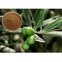 Buy cheap CAS 32619-42-4 Cosmetic Raw Materials Olive Leaf Extract Powder For Digestive System product