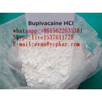 China No Side Effect Local Anesthetic Powder Bupivacaine Hydrochloride For Pain Relief wholesale