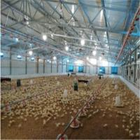 Buy cheap Poultry House&Chicken House&Poultry Farm chicken huose product