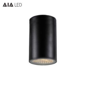 China IP54&IP44 IP65 25W ip65 led downlight&Black downlight&ip65 led surface mounted downlight on sale