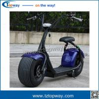 Off Road Chariot Adult Tricycle Powerful High Speed Electric Harley Motorbike