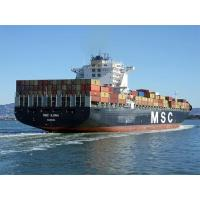 Buy cheap Sea Freight Services from Shenzhen/Guangzhou to Long Beach/Oakland,New York/Norfolk,USA product