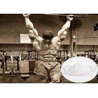 Buy cheap Effective Raw Steroid Powder Tibolone Accetate For Muscle Gainning 5630-53-5 product