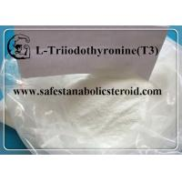 Buy cheap CAS 55-06-1 Fat Loss Hormones Natural Weight Loss Powder T3 Hormones L-Triiodothyronine product