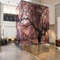 Buy cheap Lacquered Art Toughened Laminated Glass Silkscreen Printing Flat Shape For Decorative product