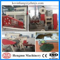 Quality Hengmu a well-known brand floating fish food pellet twin screw extruder with CE for sale