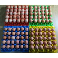 Buy cheap 30 holes Plastic egg tray/ plastic mould product product