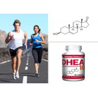 Quality Healthy Bodybuilding Steroids Dehydroisoandrosterone CAS 53-43-0 DHEA Purity 99% for sale