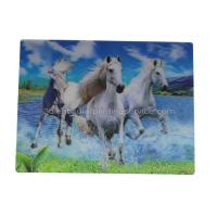 Buy cheap UV Offset Printing Lenticular 3D Fridge Magnets For Gift , Printed Fridge Magnets product