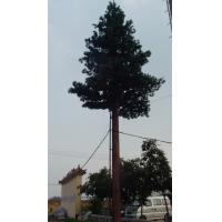 Buy cheap Cell Phone Tower Trees Hidden Cell Phone Towers 5 m product