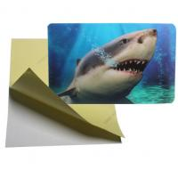 Buy cheap cheap price 3d lenticular sticker pp pet flip effect lenticular sticker printing with the adhesive on the backside product
