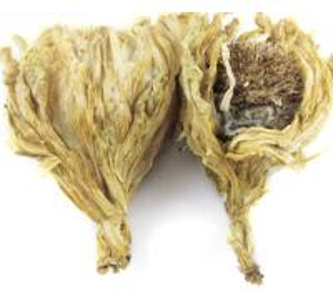 Buy cheap Dried Saussurea involucrata,Snow Lotus Herb from Saussurea involucrata (Kar. et Kir.) Sch.-Bip product