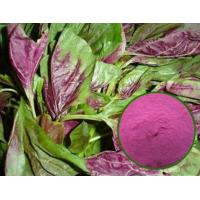 Buy cheap Water-soluble edible amaranth haematochrome extracted from A.mangstanusl L dark red pigment product