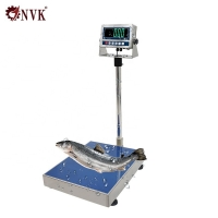 Buy cheap Digital Stainless Steel Platform Scale Bench Scale with Stainless Steel GW2 Indicator product