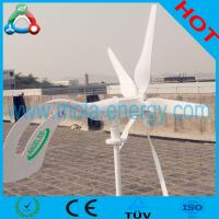 300W Small Speed Regulated Variable Pitch Wind Turbine Generator