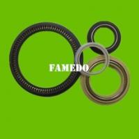 Quality PTFE spring Energized seals for sale