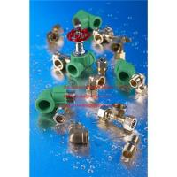 Quality PPR pipe fittings for sale