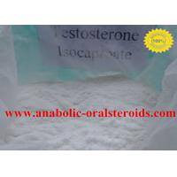 Quality Pure Testosterone Steroid Testosterone Isocaproate Powder 15262-86-9 No Side Effect for sale