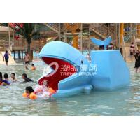 Outdoor Water Park Whales Cartoon Shape Kids Pool Water Slides, SGS