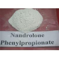 Injectable Anabolic Steroids Fat Loss Powder Nandrolone Phenylpropionate NPP CAS 62-90-8