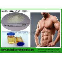 Buy cheap Bodybuilding Testosterone Steroid Blend  Powder , Testosterone Sustanon 250  White 99% Purity product