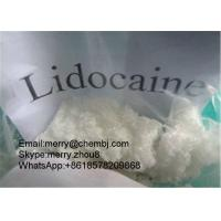 China Xylocaine Pharma Raw Powder For Local Anethtic Lidocaine CAS 137-58-6 wholesale