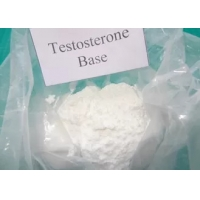 Buy cheap Legal Testosterone Steroids Testosterone Base powder CAS.58-22-0 Androgen product