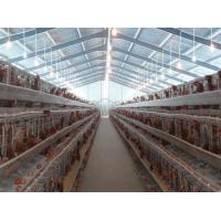PVC Down Pipe Poultry Farm Structure With Grey paint Surface