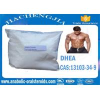 Buy cheap CAS 13103-34-9 Anabolic Steroid Powder DHEA,Dehydroepiandrosterone for Bodybuilding product