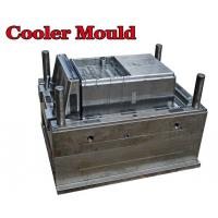 Quality High quality Plastic injection Auto cooler mould for auto parts/OEM mould in China for sale