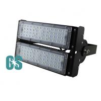 China Philip LED 100W  IP65 Led Outdoor Flood Light Bulbs CE&Rohs Certificated wholesale