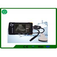 China Far Field Gain Vet Ultrasound Machine With Frame Correlation Single - B Display wholesale